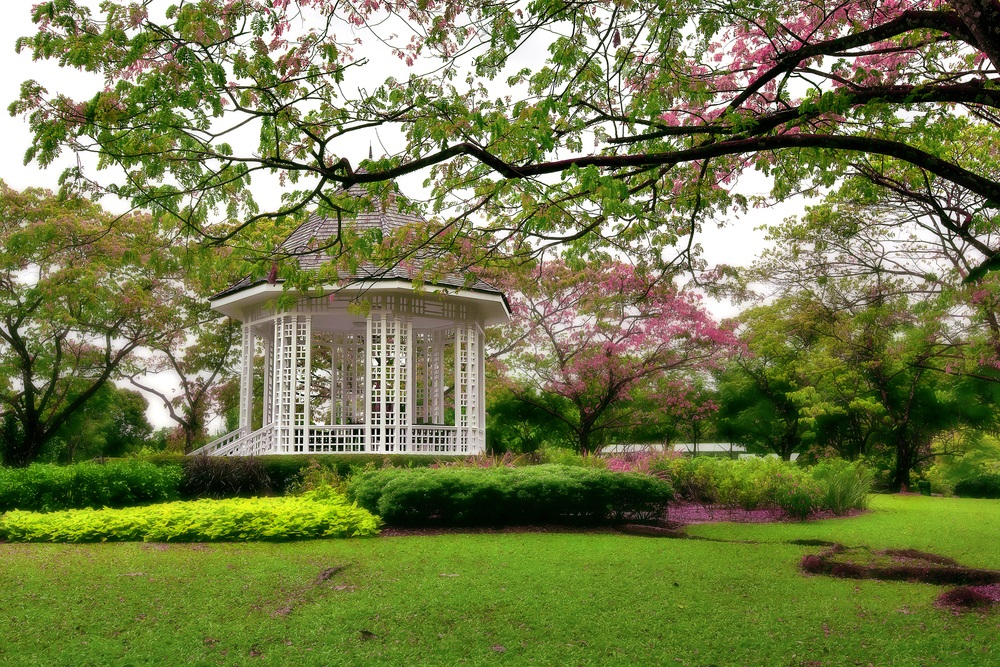 singapore botanic gardens oasis travel in singapore