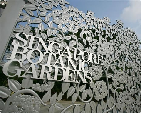Singapore botanic gardens must visited place