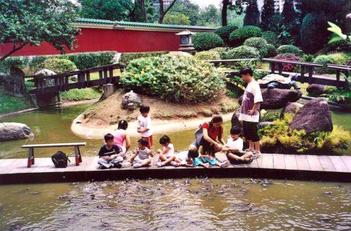 Chinese garden turtle museum