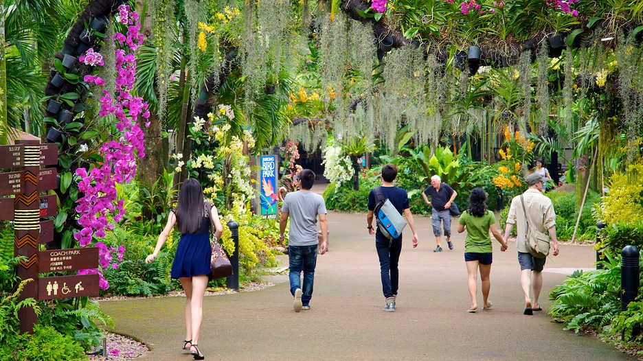 Jurong Bird Park – The Largest Bird Park in the World