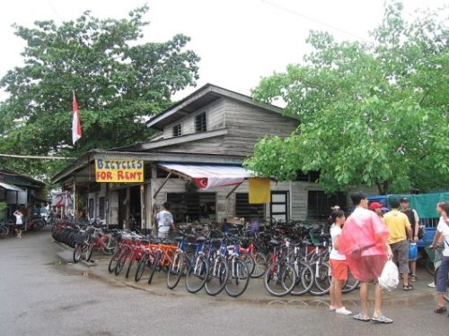 Pulau ubin bicycles rent