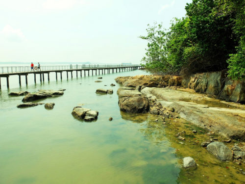 Things to do at pulau ubin
