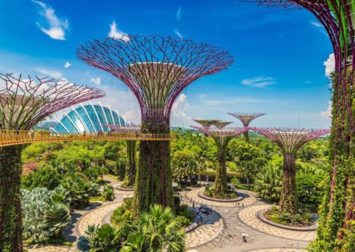 Gardens by the bay morning view