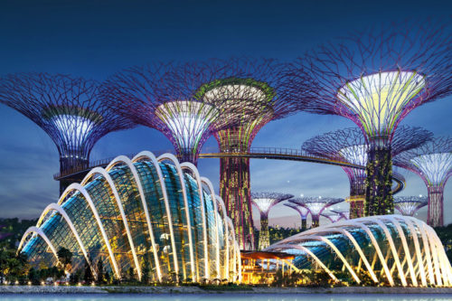 Gardens by the bay night view