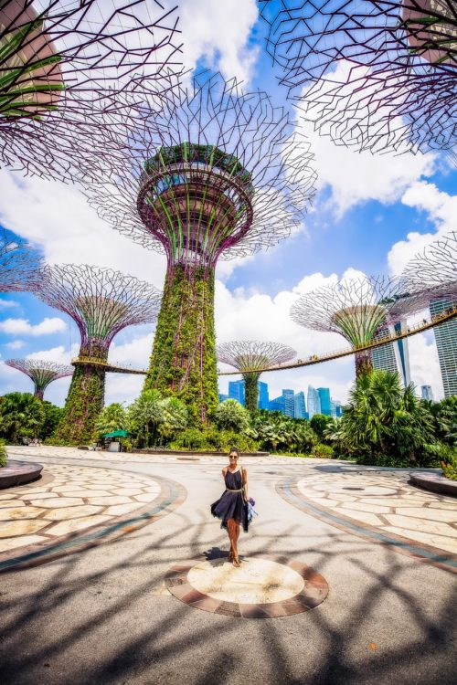Gardens by the bay singapore icon