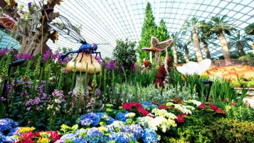 Flower dome gardens by the bay