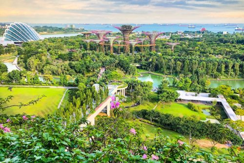 Fresh look at gardens by the bay