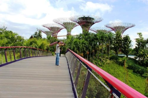 Gardens by the bay central