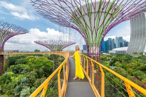 Guide to visit gardens by the bay